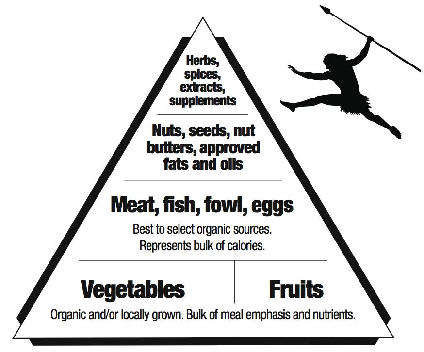 What can i eat on the primal diet there seems to be disagreement primal food pyramid malvernweather Images